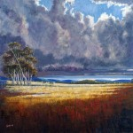 Storm, Sold